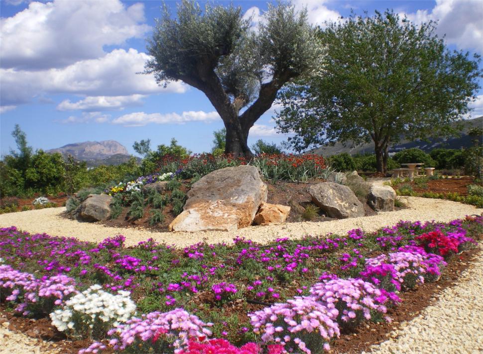 Dise o de jardines beniverd viveros for Viveros de jardin