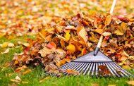 Octubre en el Calendario del Jardinero