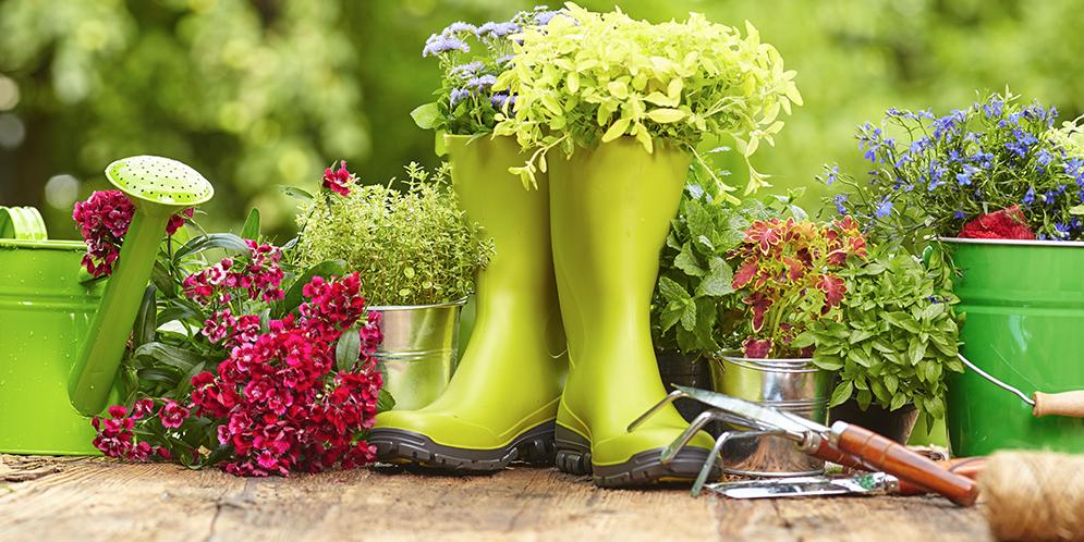 Marzo en el calendario del Jardinero