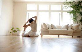Plantas en sintonía con tu hogar para hacer yoga y meditación